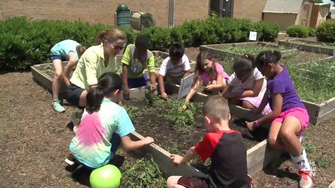 A parent volunteer with gardening experience works with children of all ages at the school, and helps teachers build lesson plans around their experiences in the garden.
