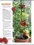 Copyright Gardeners World 2014-03