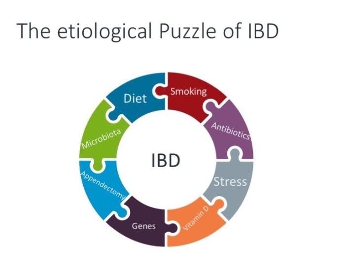 Lifecourse puzzlee ibd