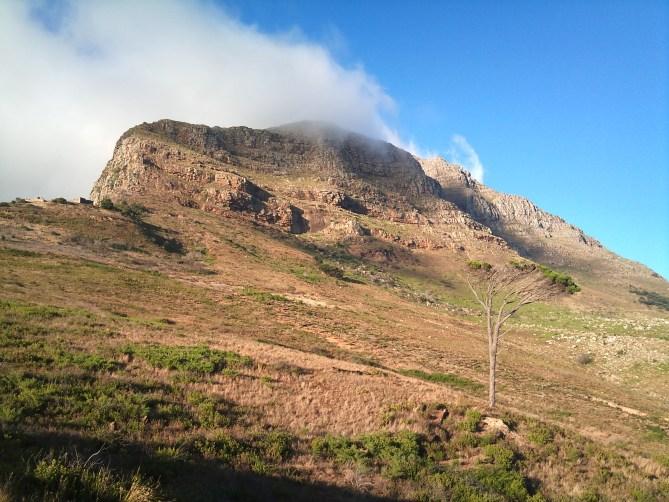 Tafelberg Kaapstad Zuid-Afrika