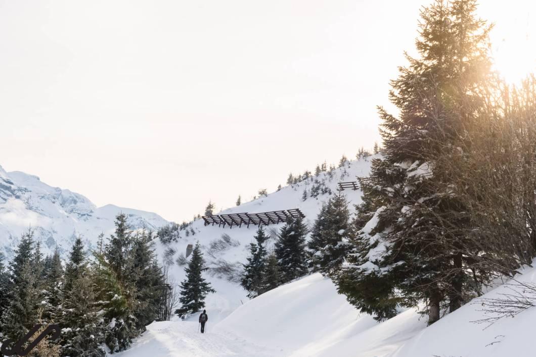 winterse wandeling in de sneeuw