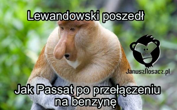 Lewandowski poszedł... Jak Passat po przełączeniu na benzynę