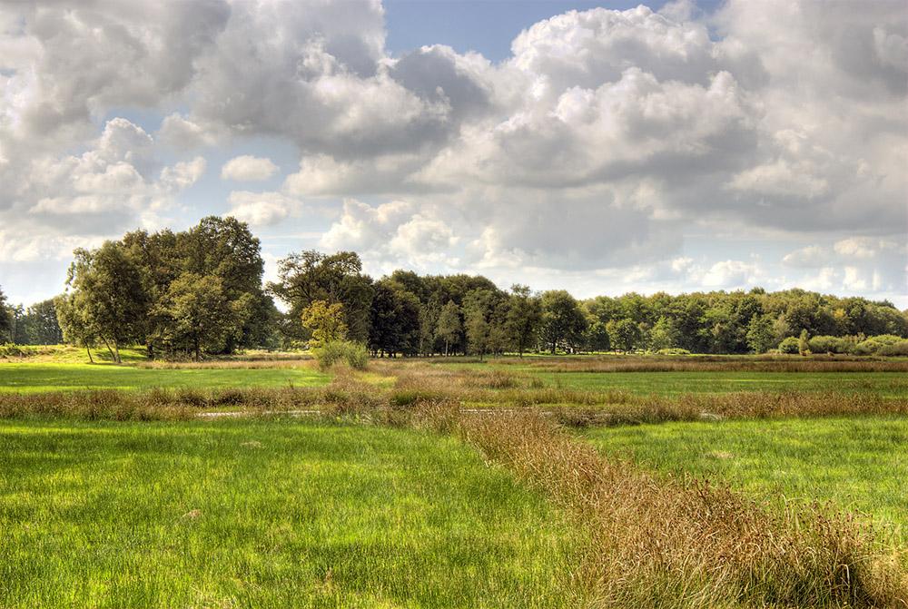 Landschappen Nederland Jan Van Der Knokke