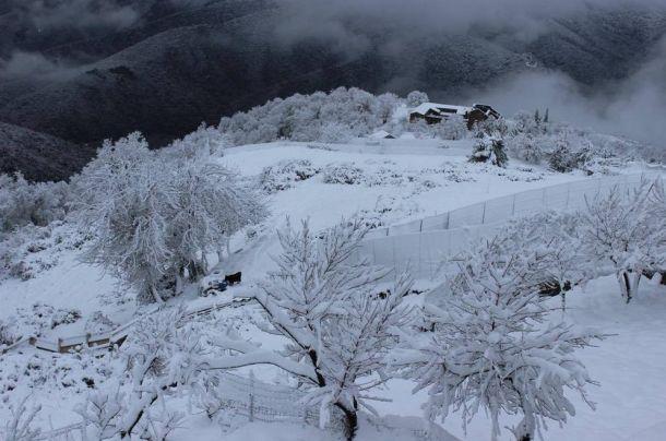Sneeuwval zaterdag 14 januari op  Corsica in Piedicorte-di-Gaggio (bron: C.S. Ribeiro, Corse-Matin).