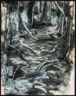 100DaysWithoutPaint_charcoal and ink on paper_A4_2016
