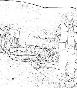 Dibujo de Romero de montería