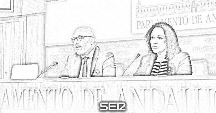 Luz Belinda Rodríguez, diputada de Voz en el Parlamento andaluz.