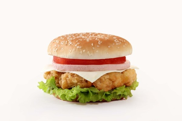burger-827309_640