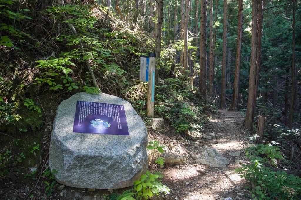 観音峯山(奈良県/大峰山脈)