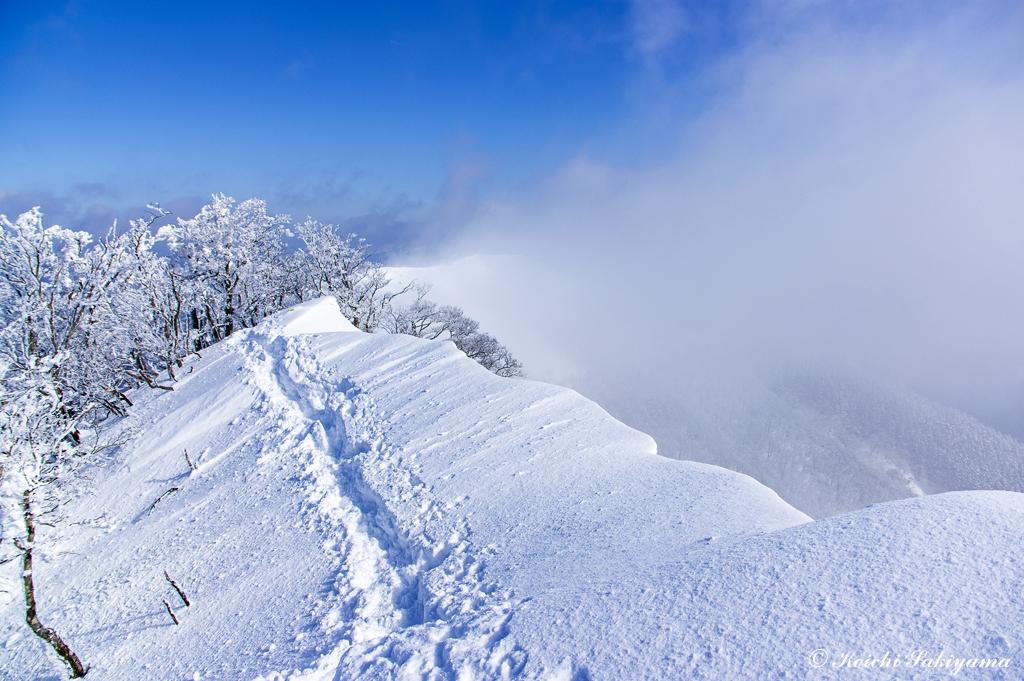 大好きな北尾根の稜線へ…ここは遮るものがなく、季節風の通り道