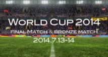ワールドカップ決勝と3位決定戦の予想オッズ