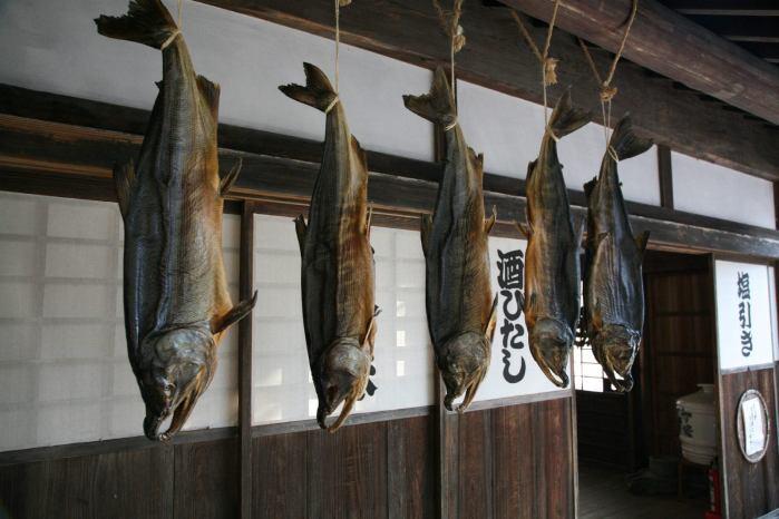 新潟県村上の鮭文化