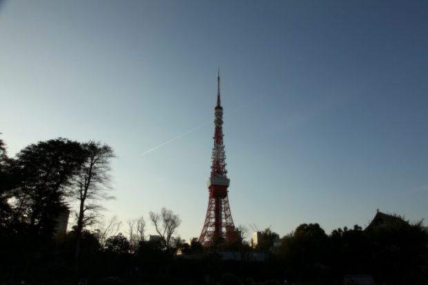 芝公園から見る夕暮れの東京タワー