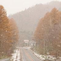 紅葉と雪の景色。むかわ町の名も無きスポット。11月