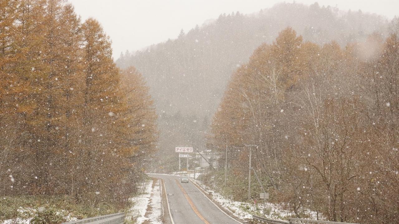 むかわ町の景色、紅葉と雪