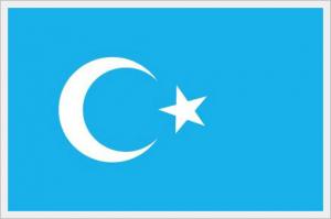 東トルキスタン国旗