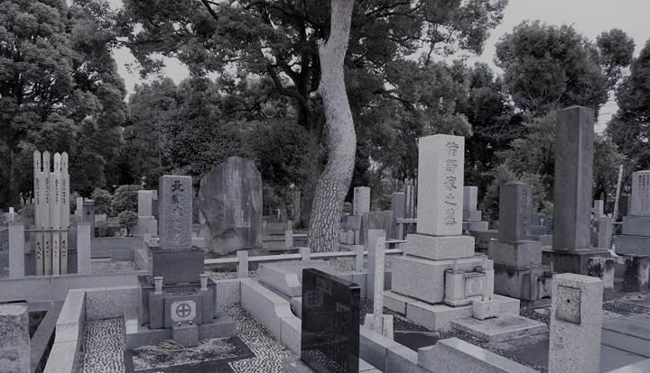 AoyamaCemetery 青山墓地 青山霊園