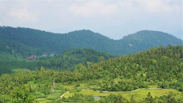 Tsugaike Natural Park 栂池自然園