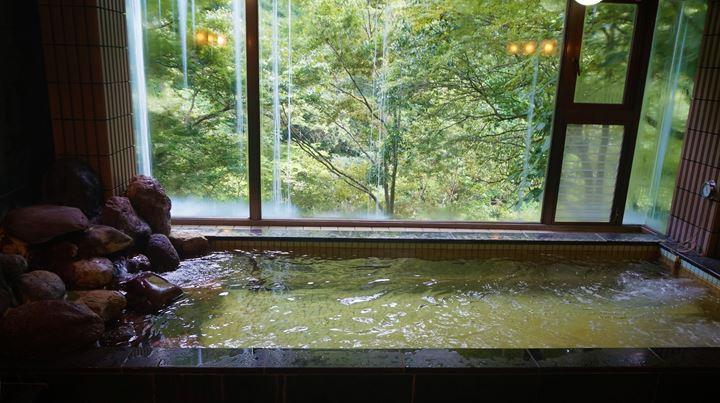 温泉 Hot spring - 三河屋旅館 氷川郷麻葉の湯 Hikawago Asahanoyu, Mikawaya Ryokan - 東京 奥多摩