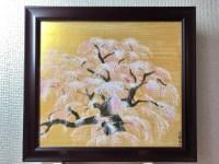 日本画 桜