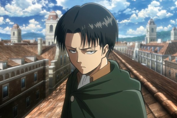 Real Action Hero Levi