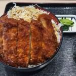 Sauce Katsudon