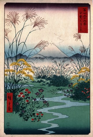 The Otsuki Plain