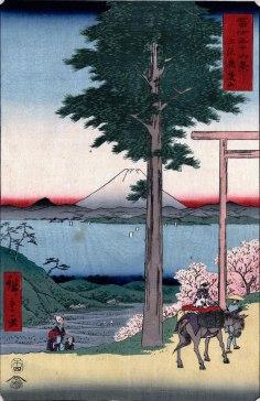 Mt. Rokusu