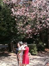 Une future mariée faisant des photos au parc Shinjuku Gyoen avec ces témoins sous les 1ers cerisiers