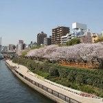 Sumida_Park_Tokyo