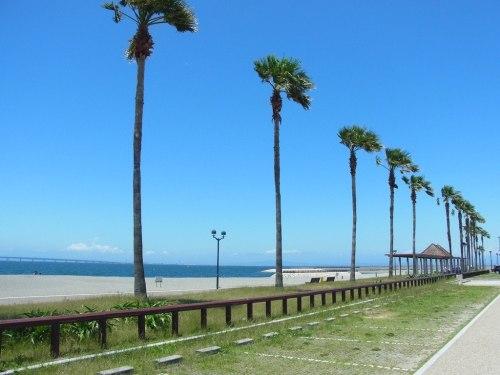 Japanese Beach