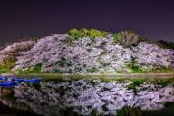 シェア&コメント大歓迎です。Takuya Igarashiさんの作品。【Takuya Igarashiさん】