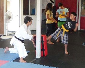 Aug 2013 Seminar Alexis Shin Kicking