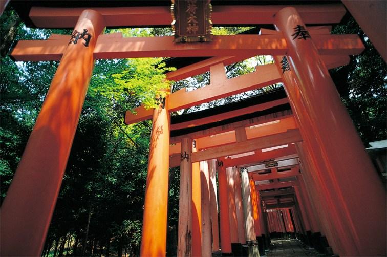 京都、伏見稲荷大社。全国に4万社あるともいわれる稲荷神社の総本宮である。 信者から奉納された約1万基の鳥居でも知られる。創建は711年。