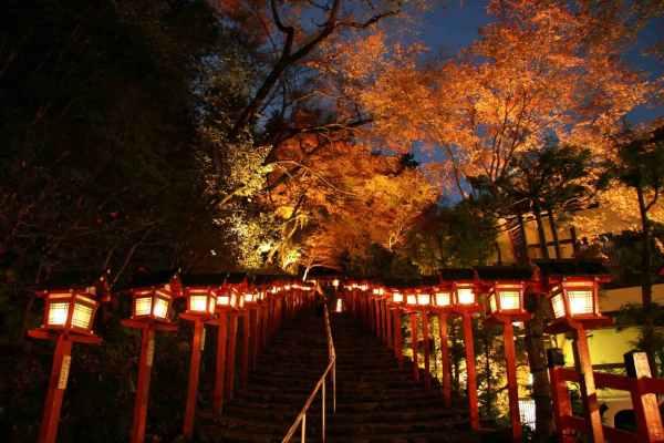 illumination kifune