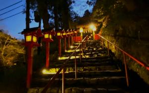 kifune night