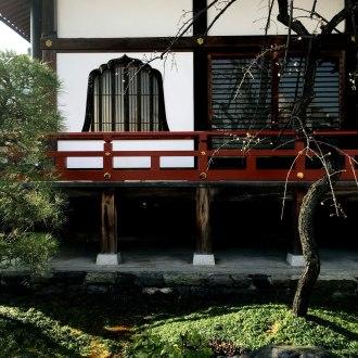 IMG_0956_blog