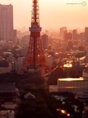 www-AG-tokyo-dinkytown_9335856