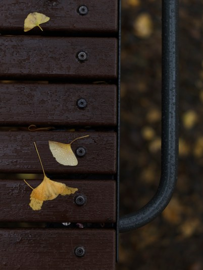 AG-autumn2017-small_9339443