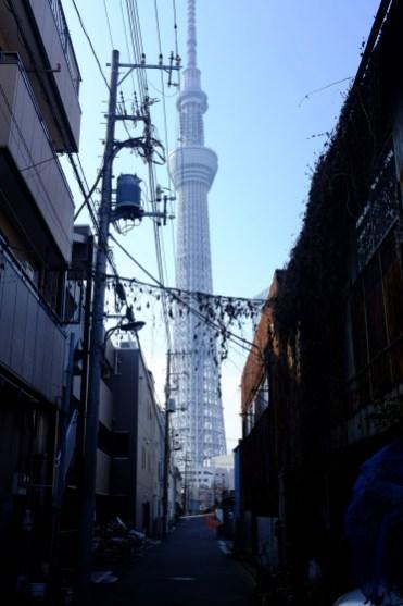 tokyo-photowalks-nethertokyo__DSF3897