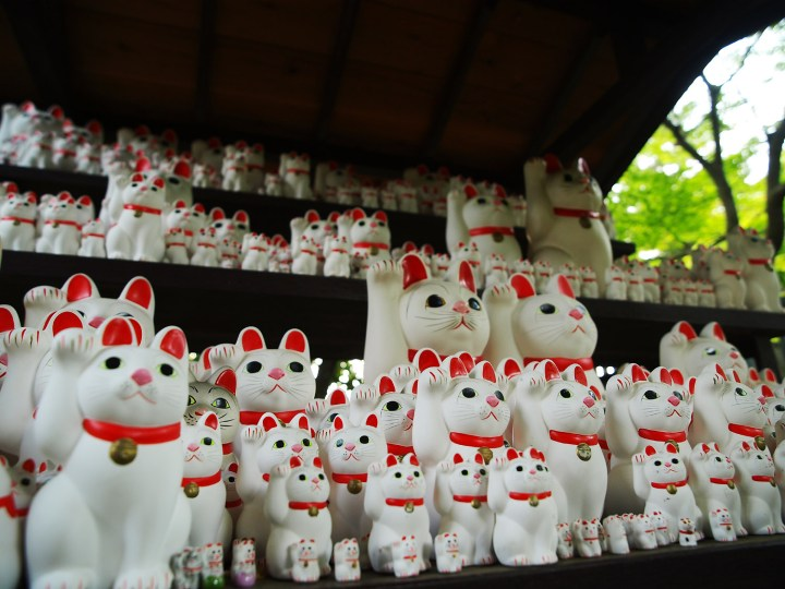 The temple isn't impoverished anymore.  They have a huge market share of the crappy cat statue market in Tokyo.