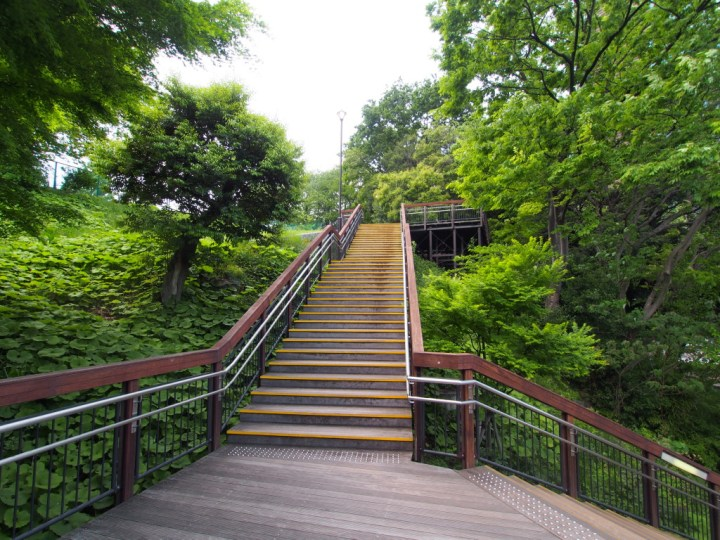 Kamezuka Park, long thought to be a kofun (pre-historic tumulus), turned out just to be a kids park.