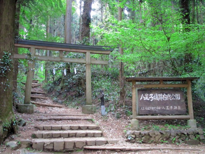 Hiking up a mountain? Nice! Wait. Why is there a torii there?