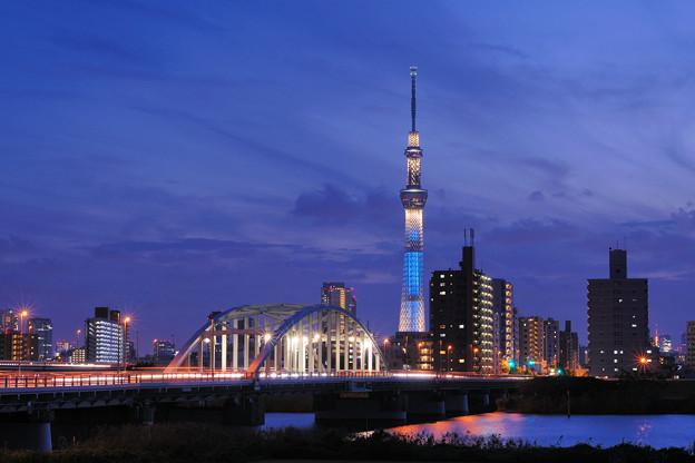 View of Sumida Ward/Tokyo Sky Tree and Yotsugibashi from Katsushika Ward.