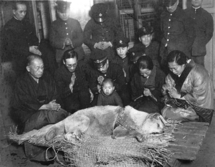 Hachiko's funeral