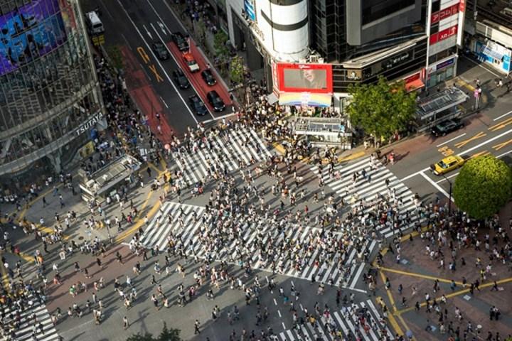 shibuya crossing intersection intersexion jinnan