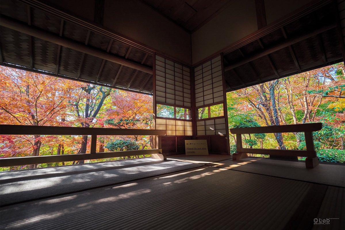 shibuya walking tour asakura mansion in autumn
