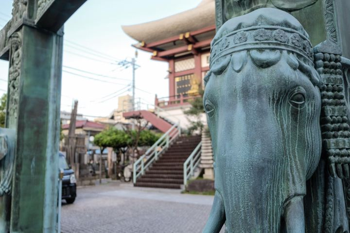 walk the tokaido