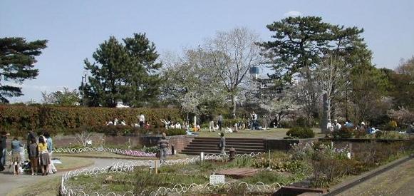 tamagawa-daikoen-rsz