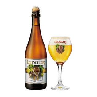 LUPULUS-BLOND